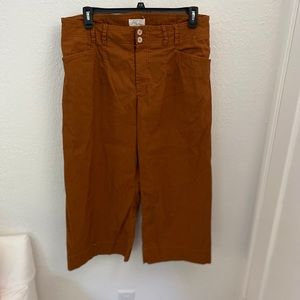 Anthropologie rust colored wide leg pants